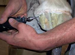 Quarter Crack Repair