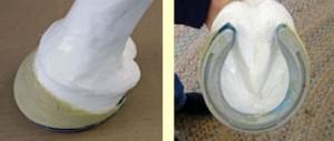 Series I Demo with Urethane Leg
