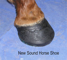 Figure 4 - Hoof trimmed & new shoe applied